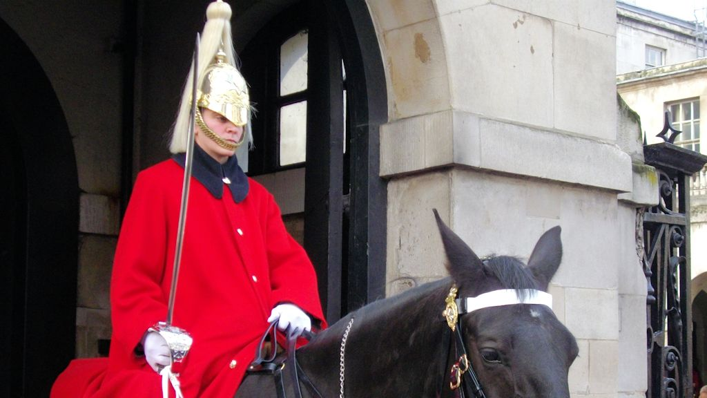 Les Horseguards - Lifeguard