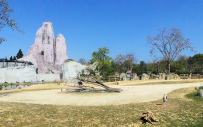 Zoo de Vincennes (Parc zoologique de Paris)